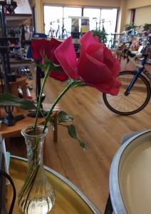 LOKO自転車保険